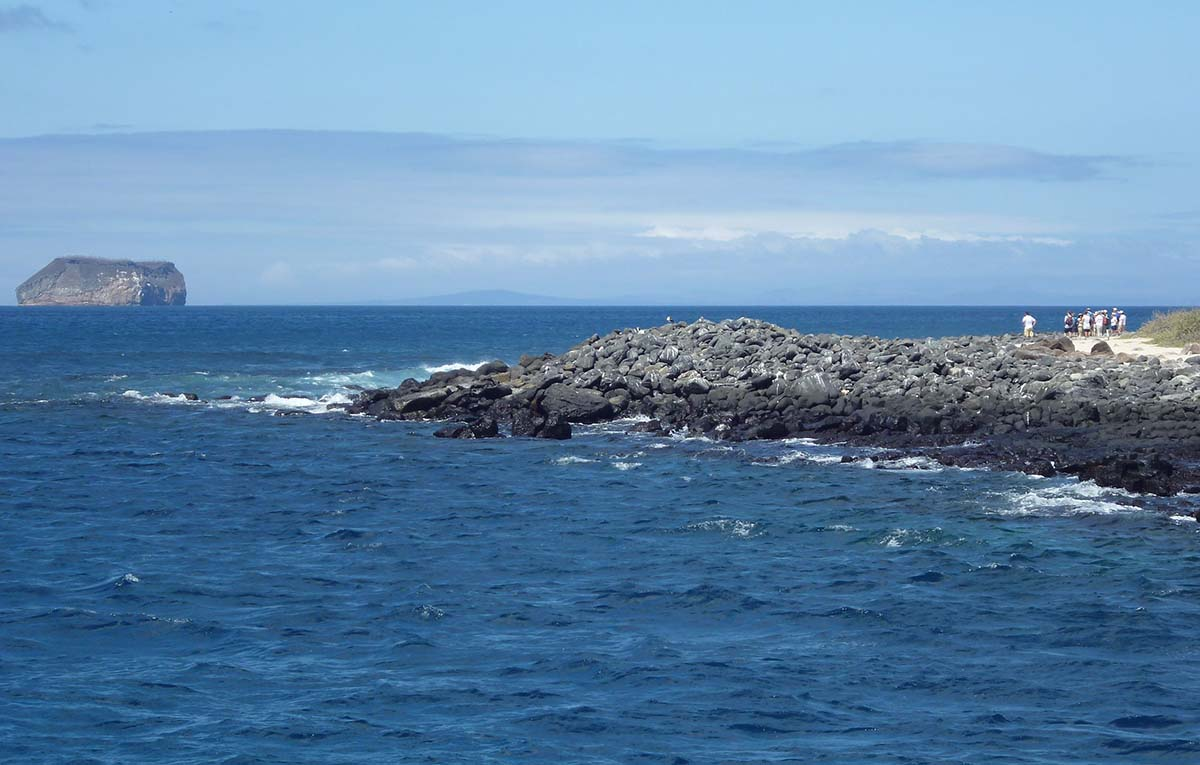 North_Seymour_Island_in_the_Galapagos_about_to_land_on_shore_photo_by_Alvaro_Sevilla_Design copy